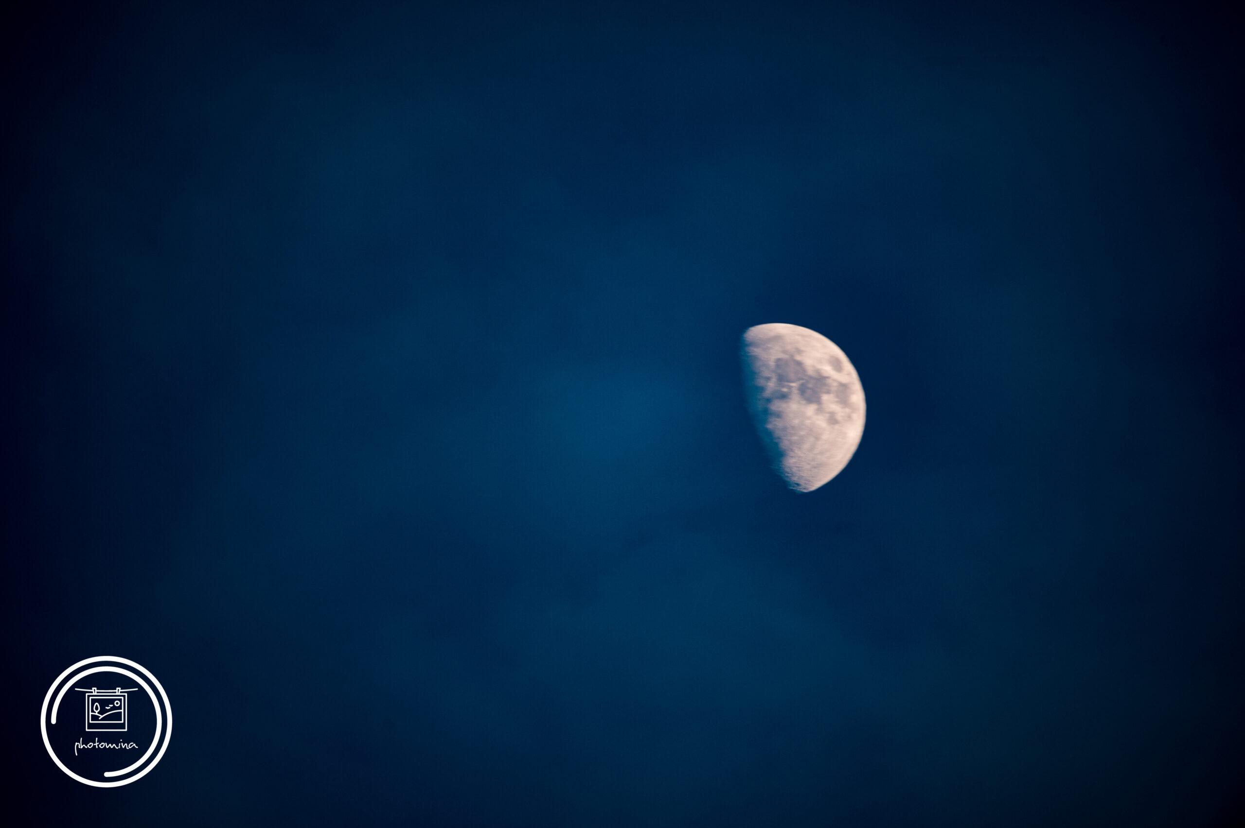Mondkunde
